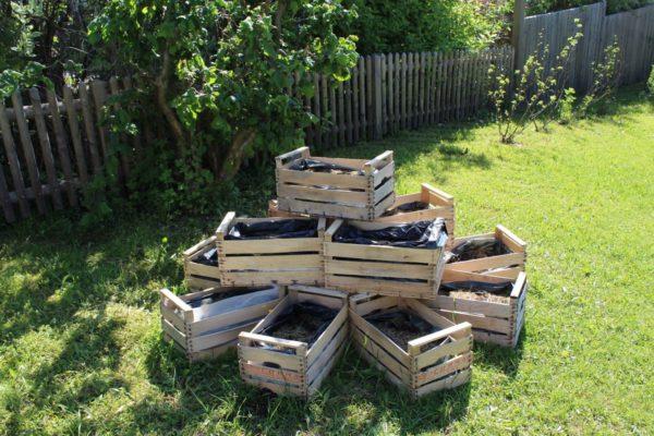 Gartenarbeit (1)
