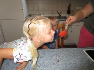Marmelade kochen (2)